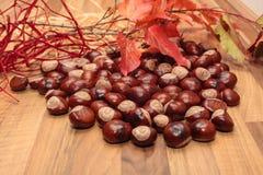 栗子和秋天装饰 免版税库存图片