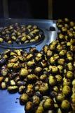 栗子烤肉在伊斯坦布尔 图库摄影