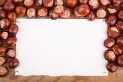 从栗子的秋天框架 免版税图库摄影