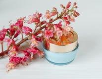 栗树,与金盖子的蓝色瓶奶油桃红色Branche  免版税库存照片