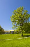 校园丹麦公园 免版税图库摄影