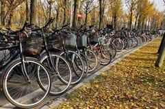 校园自行车在秋天 免版税库存照片