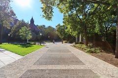 校园芝加哥大学 库存照片