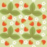 样式、叶子和莓果,无缝的纹理 免版税库存图片