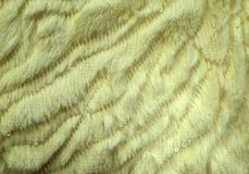 样式和织品结构 免版税库存照片