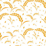 样式麦子谷物丰收 库存图片