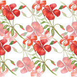 样式水彩花红色 皇族释放例证