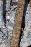 核心充满泥煤 库存图片