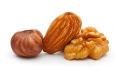 核桃、杏仁坚果和榛子 库存照片