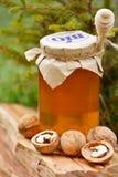 核桃和一个瓶子用蜂蜜和蜂蜜浸染工 免版税库存照片