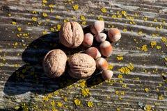 核桃和榛子在一个老木板 免版税库存图片