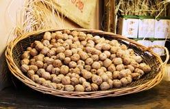核桃篮子在圣卢西亚上,波隆纳的市场 圣诞老人露西娅,意大利 免版税库存照片