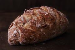 核桃面包 库存照片