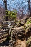 根在分裂栅栏旁边的被盖的足迹 库存照片