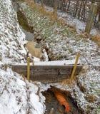 根据一台分离器的原则的临时简单,但是旋转的油障碍在一条小小河的 库存图片