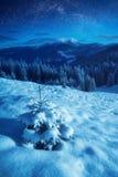 根据上升的月亮的喀尔巴阡山脉 免版税图库摄影