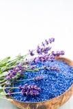 根本淡紫色盐有花顶视图 免版税图库摄影