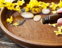 根本Oil.Aromatherapy花精华 免版税库存图片