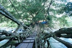 根桥梁村庄印度尼西亚 免版税库存照片