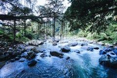 根桥梁村庄印度尼西亚 库存照片