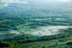 根河沼泽地的黎明 免版税库存照片