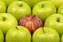格兰尼史密斯苹果Apple 免版税图库摄影