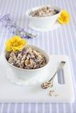 格兰诺拉麦片。早餐。 免版税图库摄影