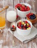 格兰诺拉麦片和新鲜的莓果 图库摄影