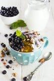 格兰诺拉麦片用蓝莓、薄菏、蜂蜜和牛奶在蓝色碗在w 库存图片