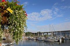 格兰维尔海岛小游艇船坞花篮子,温哥华 免版税库存照片