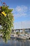 格兰维尔海岛花篮子,温哥华 库存图片