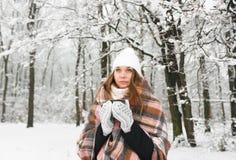 格子花呢披肩的一个女孩在冬天喝茶 免版税库存图片
