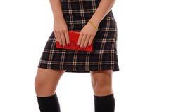 格子花呢披肩礼服的女孩有红色钱包的 库存图片