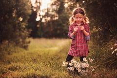 格子花呢披肩礼服的逗人喜爱的儿童女孩在夏天领域的春黄菊花读了时运 免版税库存照片
