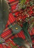 格子花呢披肩红色苏格兰人 免版税图库摄影
