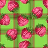 格子花呢披肩草莓 免版税图库摄影