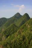 格式垂直的山峰 库存图片