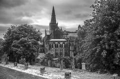格拉斯哥大教堂 免版税库存照片