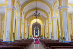 格拉纳达大教堂在尼加拉瓜 免版税图库摄影