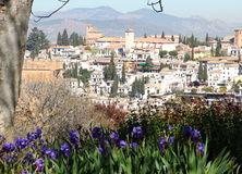 格拉纳达-阿尔罕布拉宫-赫内拉利费宫 免版税图库摄影