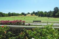 格林威治公园看法有晒日光浴在草和皇家观测所的未认出的人民的小山的在伦敦,英国 免版税库存图片