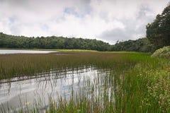 格林纳达海岛-盛大Etang湖 免版税图库摄影