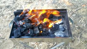 格栅火焰 库存照片