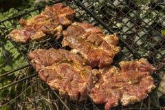 格栅的肉 免版税库存照片