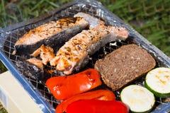格栅空白查出的蔬菜 蕃茄、夏南瓜、鸡和黄瓜 在栅格格栅是油煎的菜 免版税库存图片