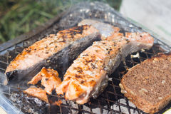 格栅空白查出的蔬菜 蕃茄、夏南瓜、鸡和黄瓜 在栅格格栅是油煎的菜 库存照片