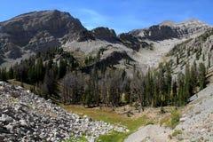 格洛斯Ventre自然保护区 免版税库存图片