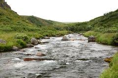 格特鲁德小河,阿拉斯加 图库摄影