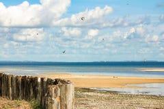 格赖夫斯瓦尔德海湾波罗的海的 免版税图库摄影