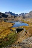 格陵兰夏天 库存照片